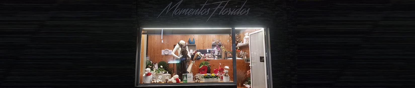 Momentos Floridos